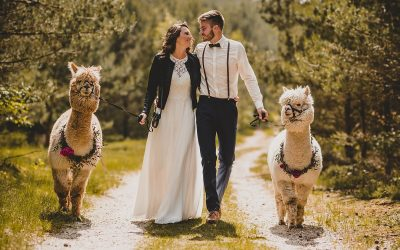 Born in the woods – Inspiration eines rustikalen Elopements im Wald