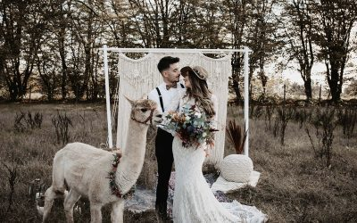 Ein herbstliches Boho Couple Shooting mit Alpakas