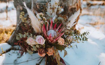 Winter Fire – Eine winterliche Brautstrauß Inspiration im Schnee mit feuriger Protea