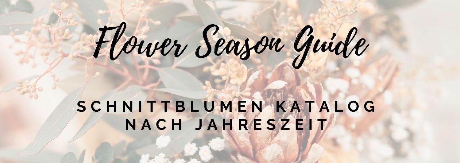 Schnittblumen Katalog, Jahreszeiten Schnittblumen, Hochzeitsfloristik, Brautstrauß, Blumendekor