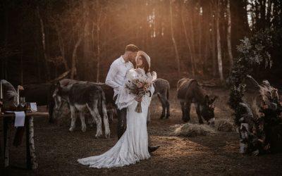 Boho Donkey Forest – Eine inspirierende Bohohochzeit auf einer Waldlichtung